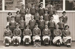 Ian Parker Class - Grade 5 or 6?