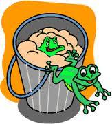 katak dalam baldi