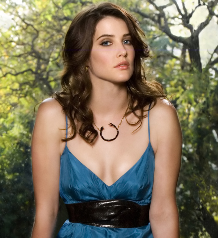 Canadian Celebrities Hairstyle - Cobie Smulders