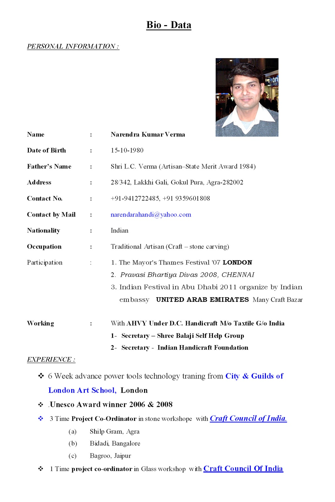 sample resume bio data converza co