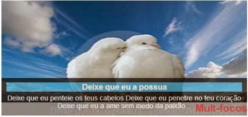 Casal de pombos