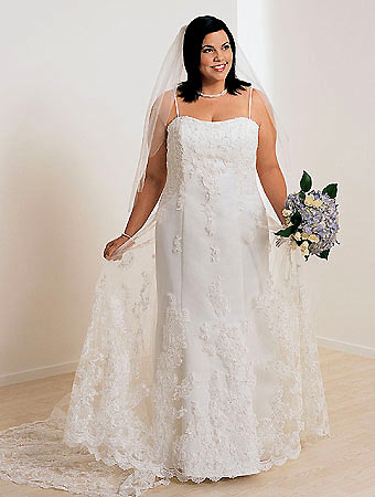 Luxury Plus Sized Bridal Dresses  OnlyGowns Blog