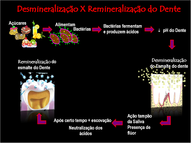 Dentes Amp Companhia Idades De Maior Risco Para A Doena Carie
