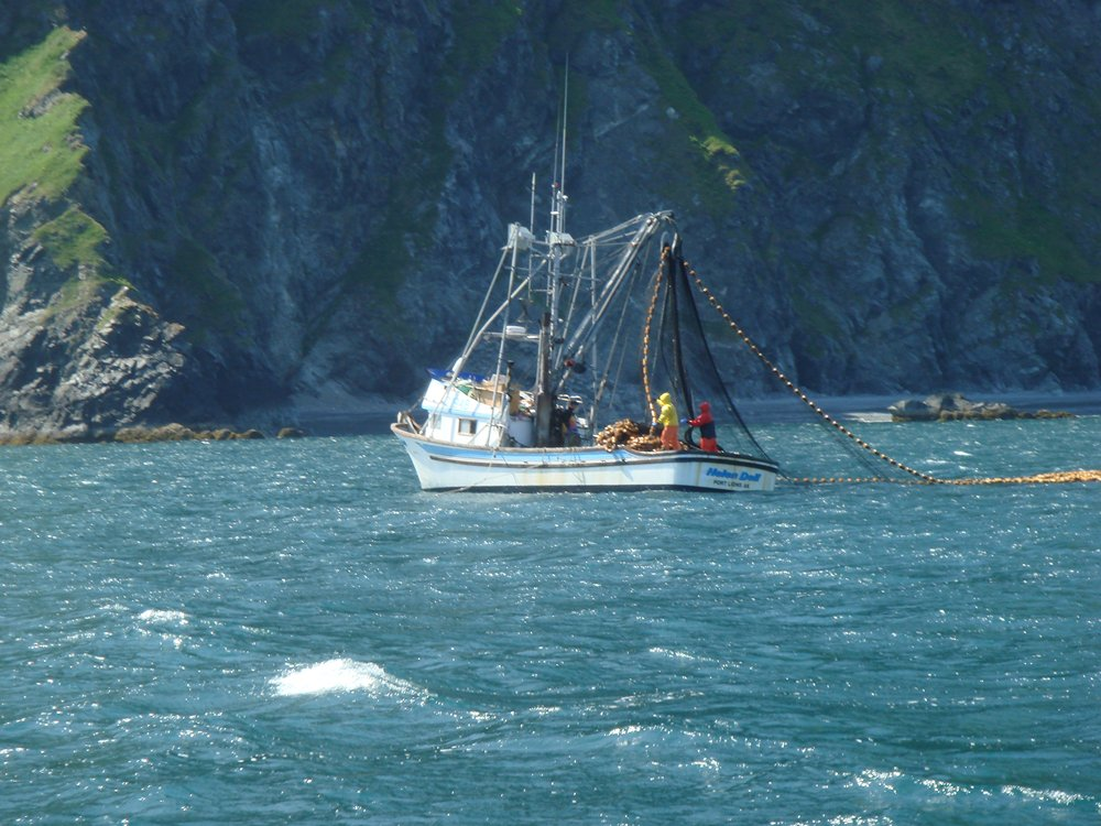 Fishing boats speed boats and sailboats fishing boats for Alaska fishing boats
