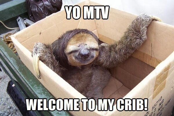 30 Funny animal captions - part 18 (30 pics), sloth meme, yo mtv welcome to my crib