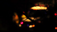 Fire truck and fire fighters respond to a rescue call. Shot with the background out of focus with foreground branches in focus.  Voyeuristic.