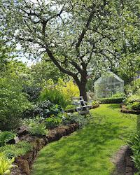 Morgon i trädgården