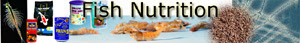 Aquarium Fish Nutrition, Important Ingredients in Fish Feeding