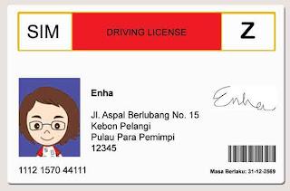 SIM nya enha