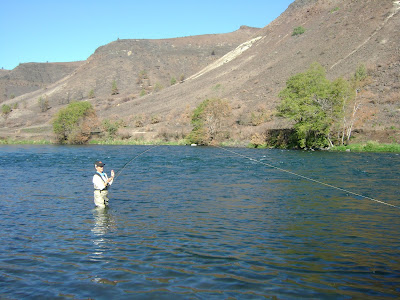 Picture from Lower Deschutes