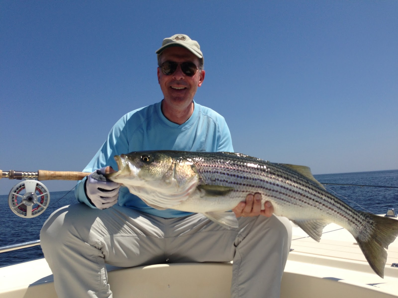 Boston fly fishing and report july stripers from the for North shore fishing report