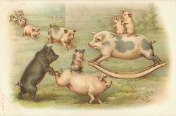 Charming piggies