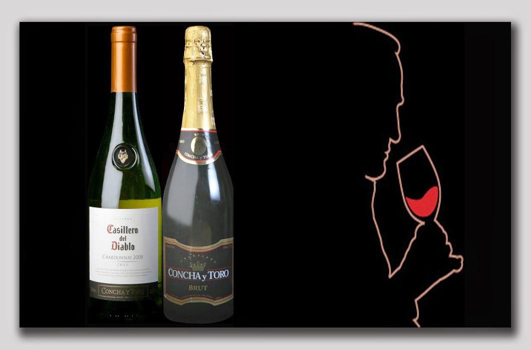 La ruta del vino con Casilleros - Chile