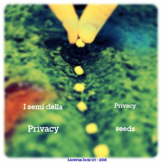 Privacy Seeds  -  I semi della privacy