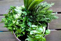 Barefoot Contessa' French Potato Salad Lady Gouda