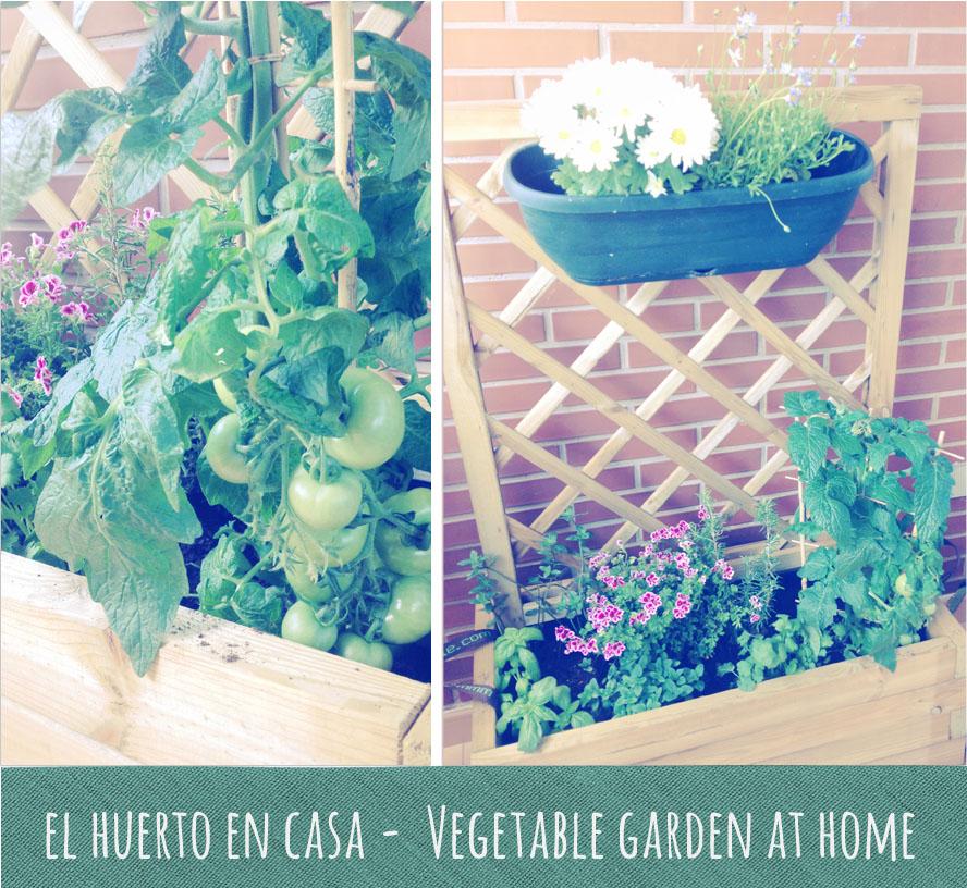 El huerto en casa vegetable garden at home kandy dise os - El huerto en casa ...