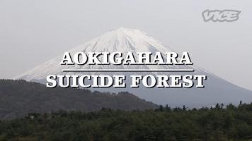 aokigahara floresta suicídios