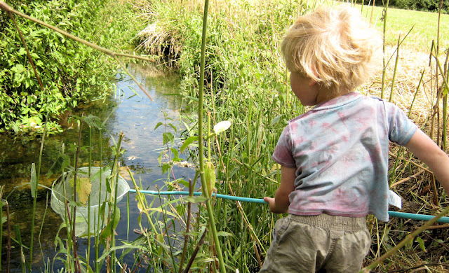 blond boy pond dipping with net beauty of nature