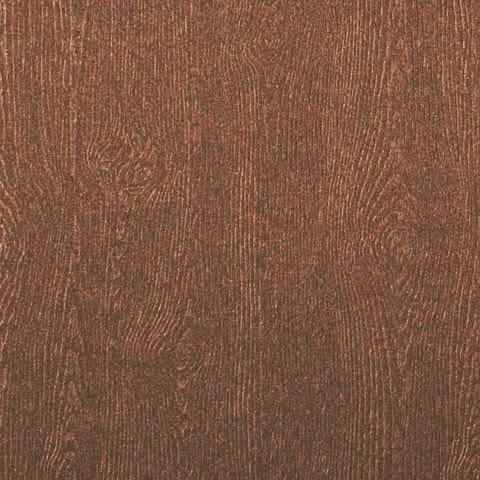 Paper Issues Product Spotlight Woodgrain Cardstock