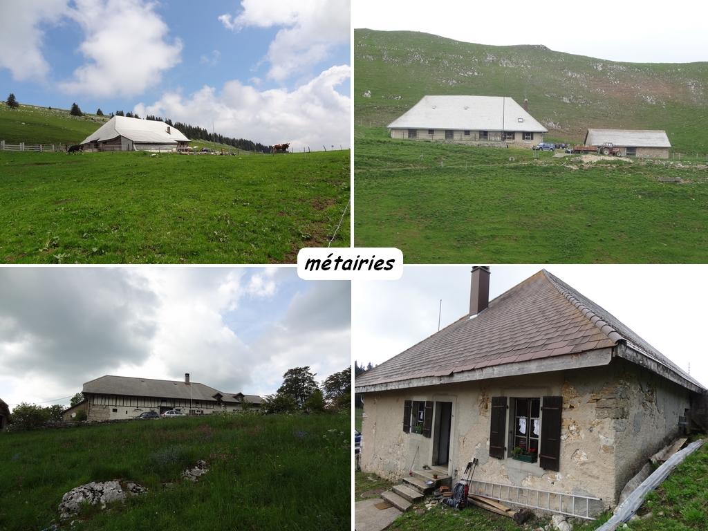 Aux confins de l 39 arc jurassien le jura bernois le blog for Le jardin morat