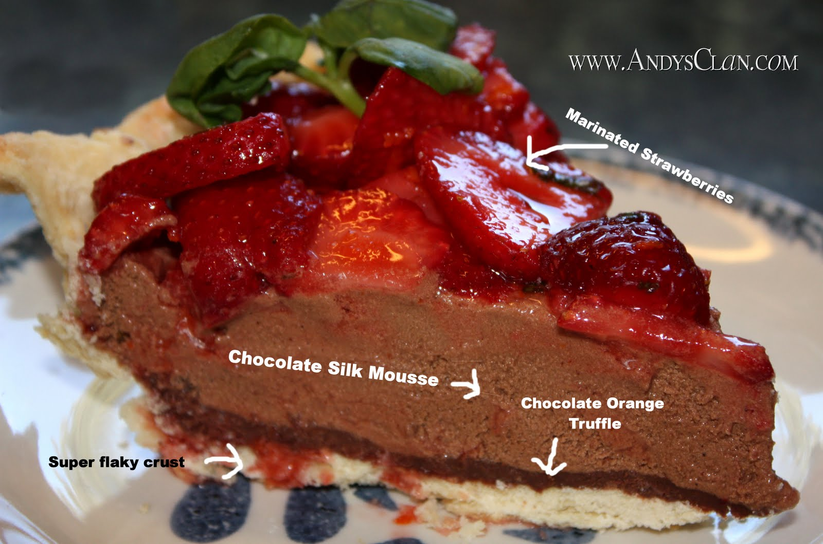 Andy's Clan Cooks!: Chocolate Truffle French Silk Pie with Marinated ...