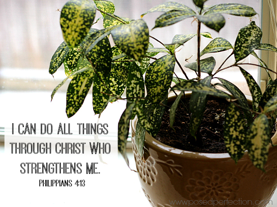 I can do all things through Christ who strengthens me. ~ Philippians 4:13