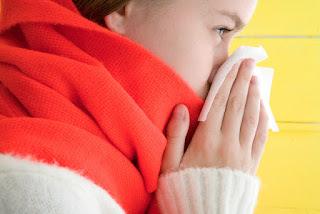 Pilek yaitu sejenis penyakit yang cukup merepotkan BLOG PAGE ONE GOOGLE | 4 Tips Sederhana Mengobati Pilek