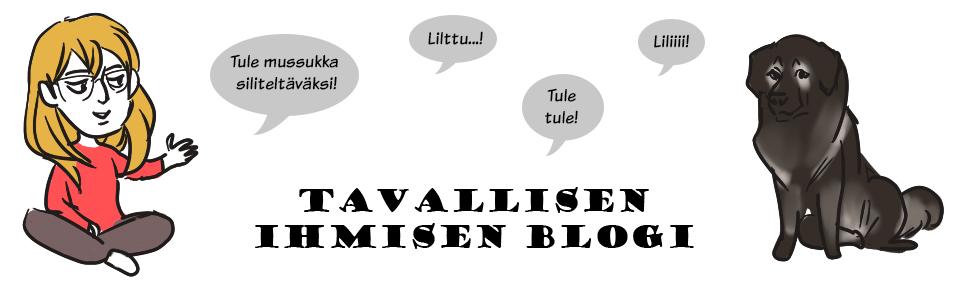 Tavallisen ihmisen blogi