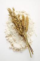 Un, Organik Un, Buğday Başağı