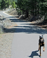 Truckee River Legacy Trail extension planned for summer