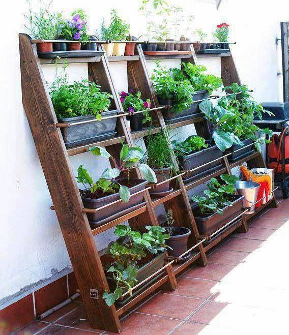 jardim vertical urbano:Para quem tem a sorte de ter mesmo um jardim, pátio, quintal, porque