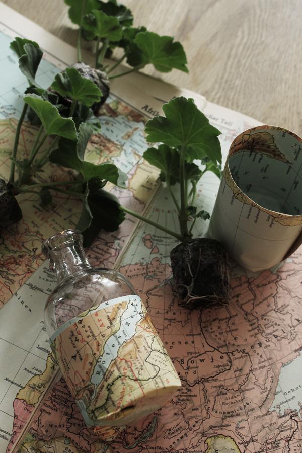 diy krukor, diy karta, gör egna krukor, plantera sticklingar, pelargoner med små krukor, gör det själv