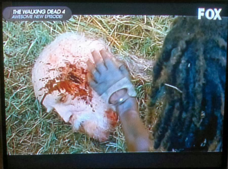 After, Michonne, The Walking Dead, Walking Dead Season 4 Episode 9