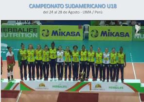 BRASIL CAMPEÓN XX SUDAMERICANO LIMA 2016
