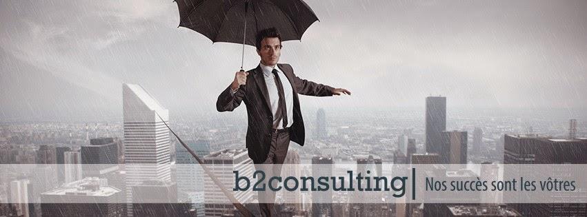 b2consulting, Yan Burrin