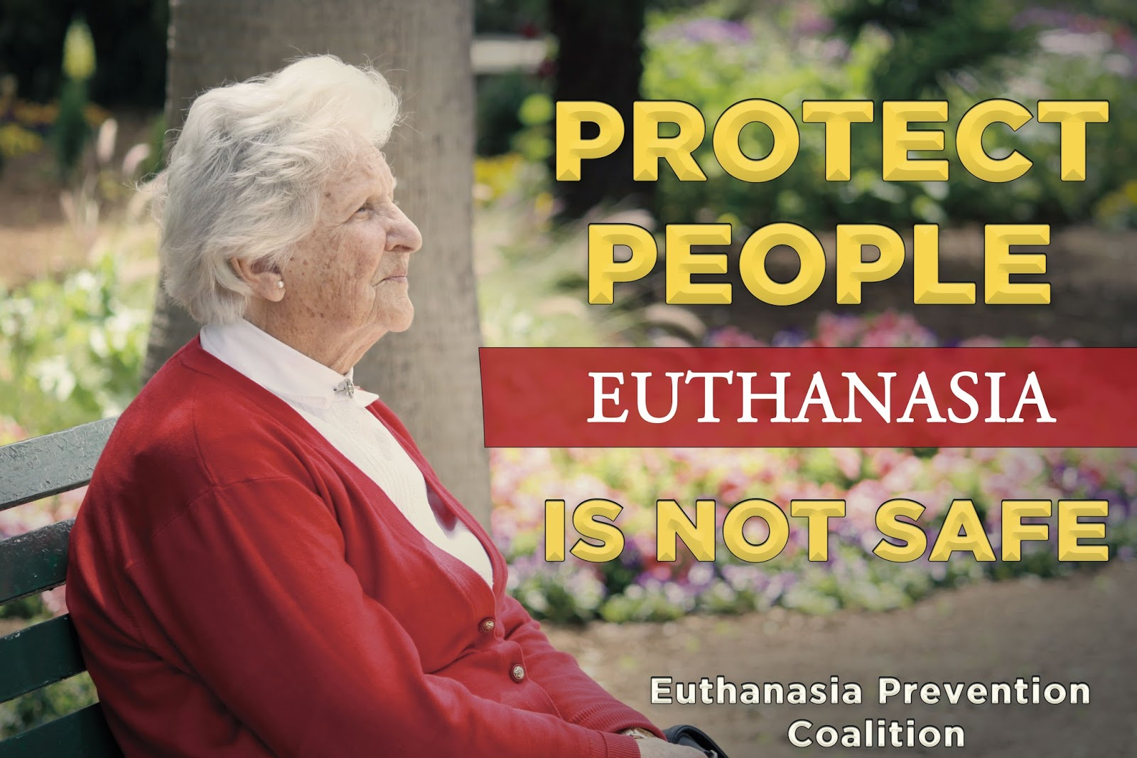 recent case studies on euthanasia