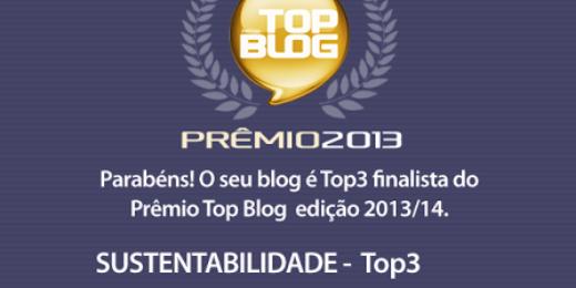 PRÊMIO TOP BLOG BRASIL 2013