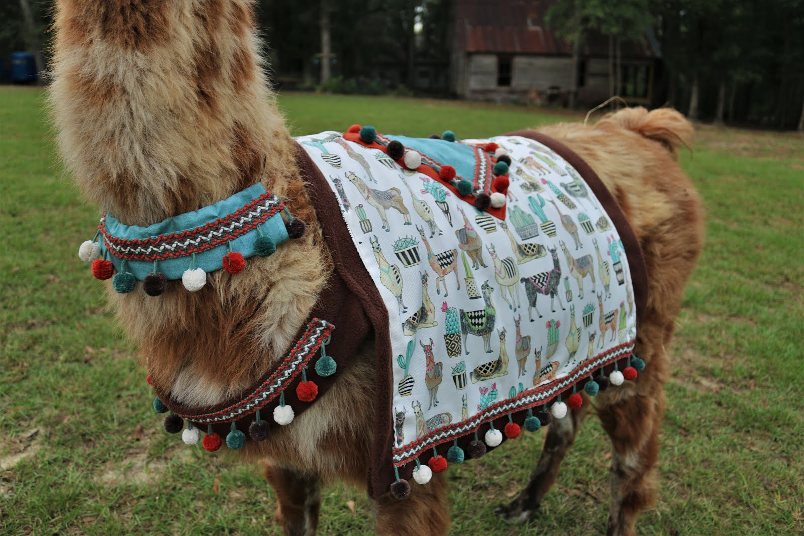 Llama Blankets for sale