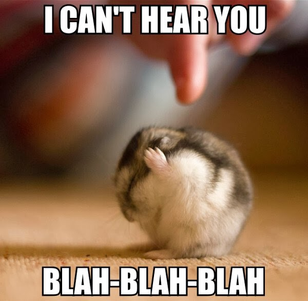 30 Funny animal captions - part 18 (30 pics), hamster meme i cant hear you