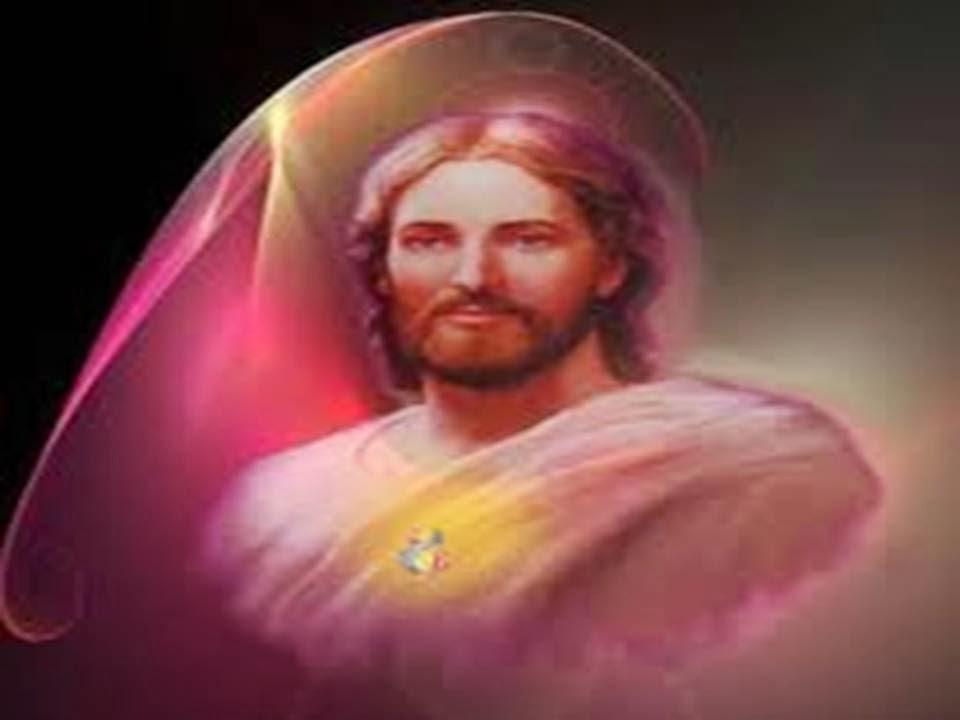 Jesus rosa