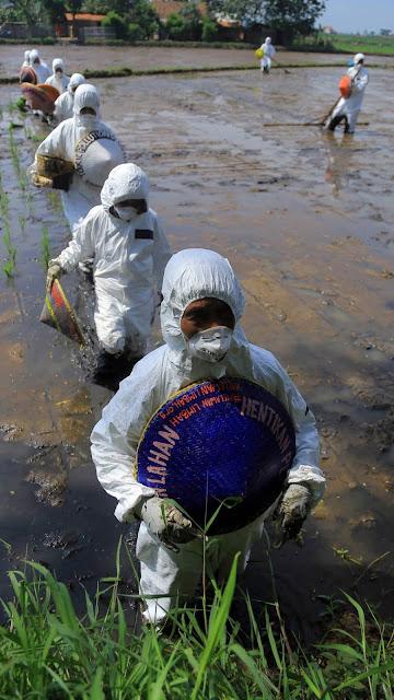 Greenpeace : Pembuangan limbah B3 Industri di Sungai Citarum masih berlangsung masif