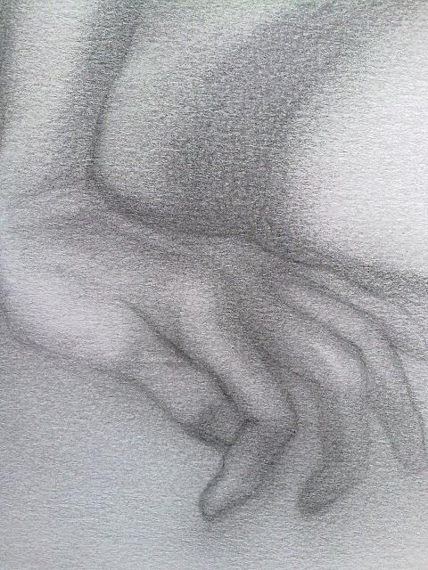 dibujo anatomia de mano
