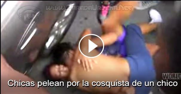 PELEAS CALLEJERAS: Chicas pelean por la conquista de un Amigo