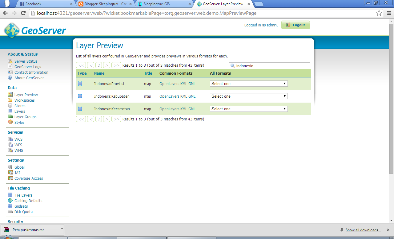 Layer Preview Geoserver