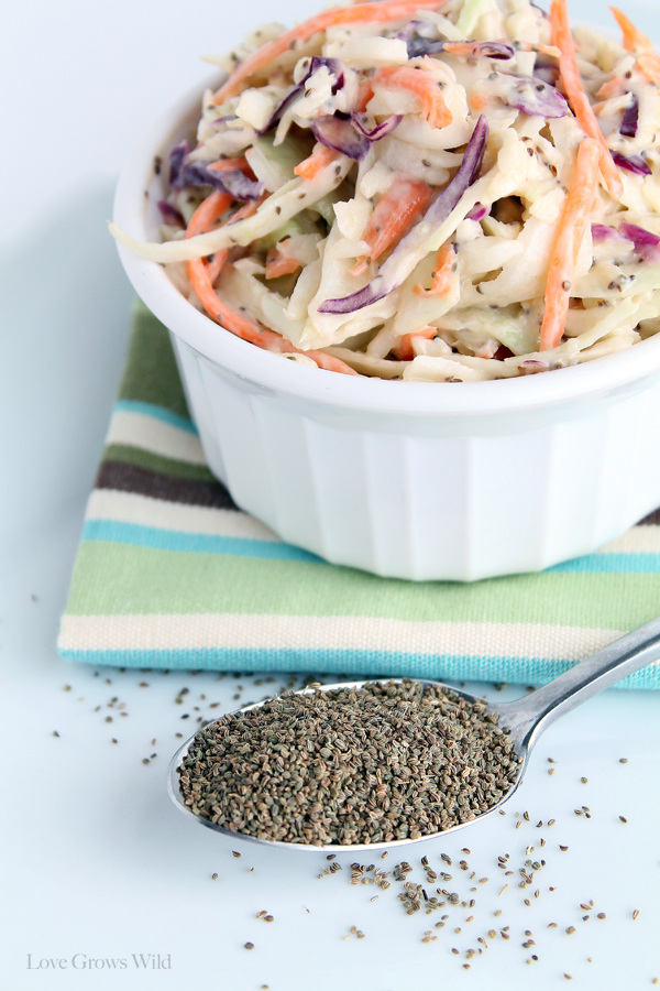 Easy Creamy Coleslaw recipe perfect for Summer parties and cookouts ...
