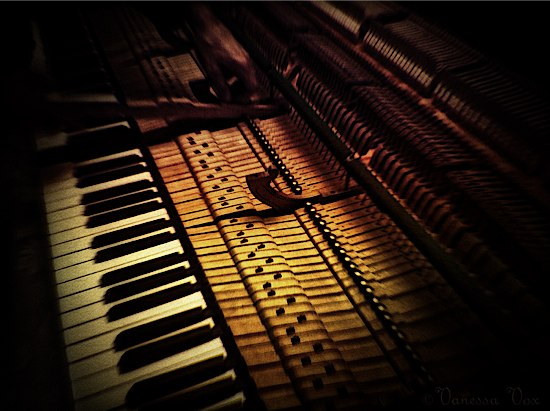 Inside the Music © Vanessa Vox