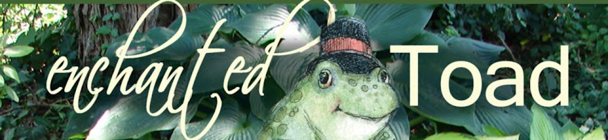 The Enchanted Toad