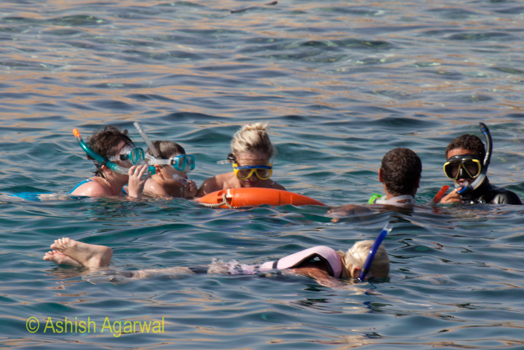 Tourists wearing snorkeling equipment and swimming next to a guide in the Red Sea