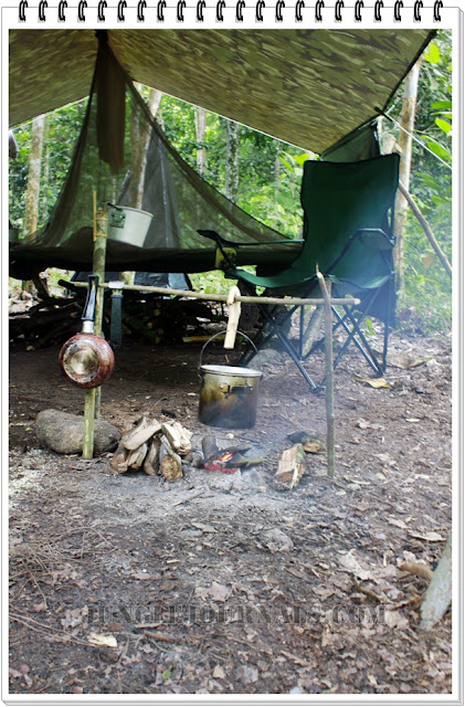 Monsoon Jungle Camping Log ~ Jungle Camp in The Morning