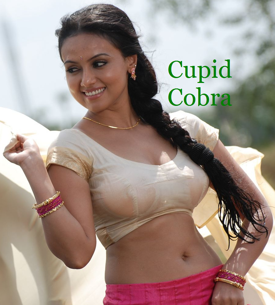 Indian nude actresses pics hot south